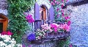 Concorso Balconi e vicoli in fiore